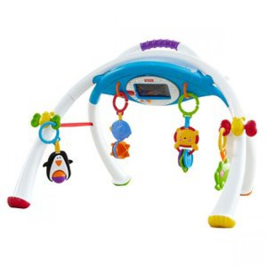 Fisher Price Apptivity Gym